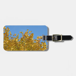 Bright autumn trees in city garden in autumn bag tag