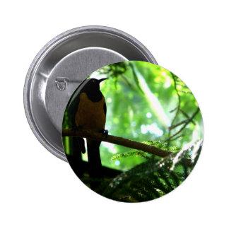 Bright Bird Pinback Button