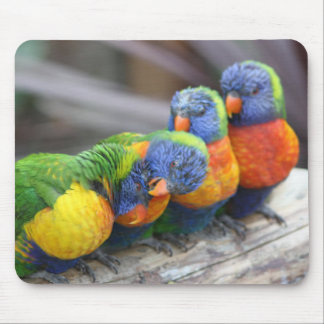 Bright Birds Mouse Pad