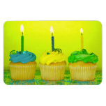 Bright Birthday Cupcakes Rectangle Magnets