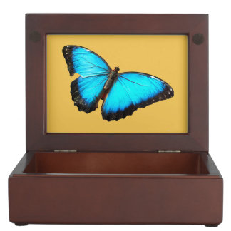Bright blue butterfly memory box