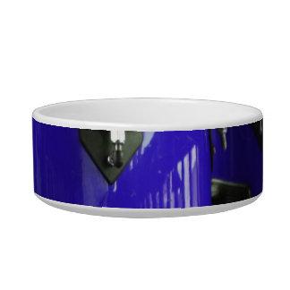 Bright blue conga drums photo cat bowl