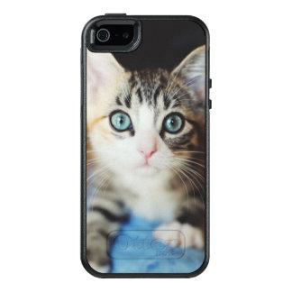 Bright Blue Eyed Kitten OtterBox iPhone 5/5s/SE Case