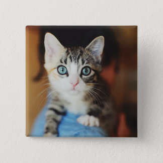 Bright Blue Eyed Kitten Pinback Button