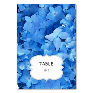 Bright Blue Hydrangea Table / Place Cards