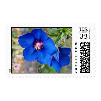 Bright Blue Poppy Flower postage