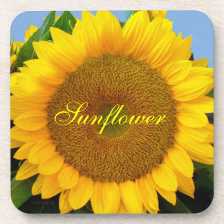Bright Blue Sunflower Coaster