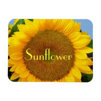 Bright Blue Sunflower Magnet