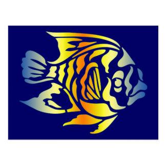 Bright Bold Colorful Fancy Fish Tees, Gfits Postcard
