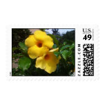 Bright Boom Yellow Flowers Stamp