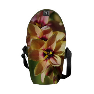 Bright Bulb Ixia -Mini Messenger Bag Outside Print