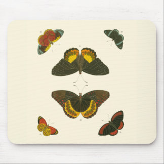 Bright Butterflies by Pieter Cramer Mouse Pad