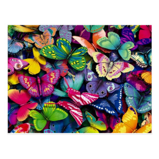 Bright Butterflies Postcards