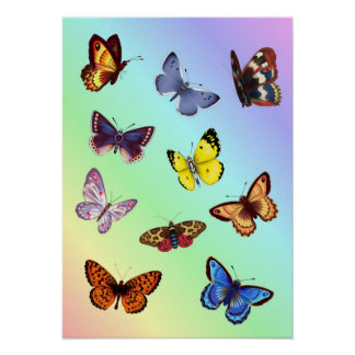 Bright Butterflies Posters