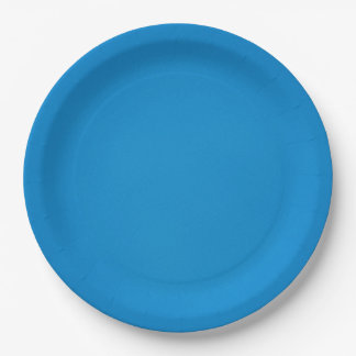 Bright Cerulean Blue with Grainy Texture 9 Inch Paper Plate