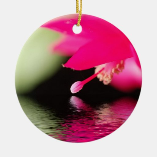 Bright Christmas Cactus Bloom with Reflection Double-Sided Ceramic Round Christmas Ornament