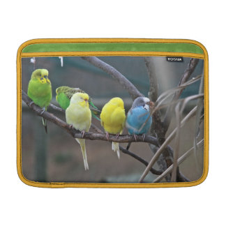 Bright Colorful Australian Parakeets Budgies Birds Sleeves For MacBook Air