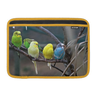 Bright Colorful Australian Parakeets Budgies Birds Sleeve For MacBook Air