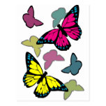 Bright colorful butterflies post cards