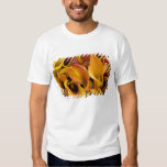 Bright colorful calla lilies at the T-Shirt