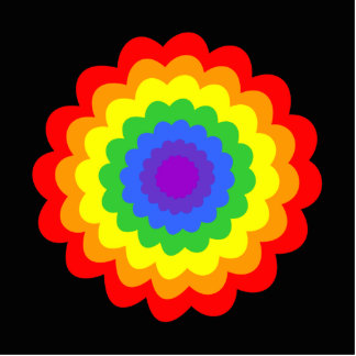 Bright colorful flower in rainbow colors. acrylic cut out