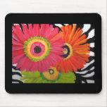 Bright & Colorful Gerbera Daisies Mousepad