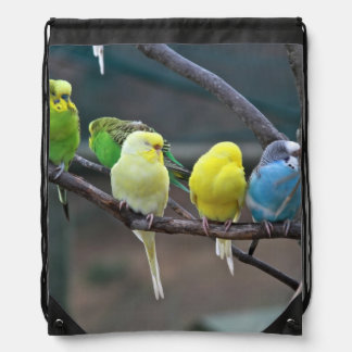 Bright Colorful Parakeets Budgies Parrots Birds Backpack