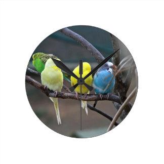 Bright Colorful Parakeets Budgies Parrots Birds Clocks