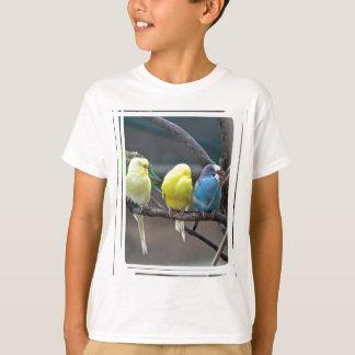 Bright Colorful Parakeets Budgies Parrots Birds T-Shirt