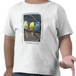 Bright Colorful Parakeets Budgies Parrots Birds Shirt