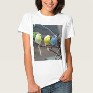 Bright Colorful Parakeets Budgies Parrots Birds Tshirts