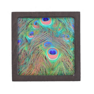 Bright Colorful Peacock Feathers Jewelry Box