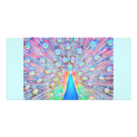 Bright Colorful *Peacock* Spirit Design Photo Card