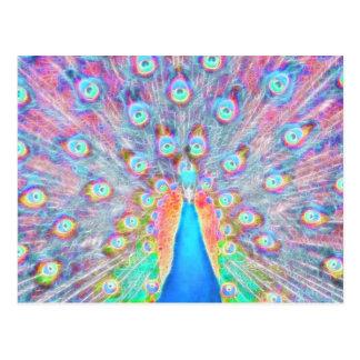 Bright Colorful *Peacock* Spirit Design Postcard