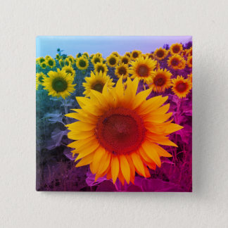 Bright Colorful Rainbow Sunflowers Harvest Button