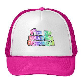 Bright Colors Algebra Teacher Hats
