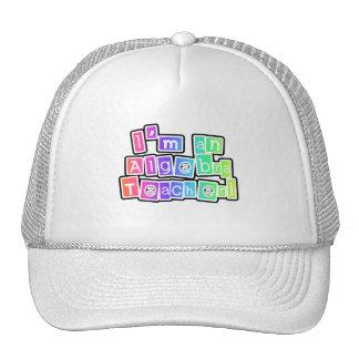 Bright Colors Algebra Teacher Hat