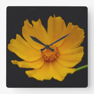 Bright Coreopsis flower Square Wall Clock