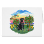 Bright Country - Black Labrador Greeting Card