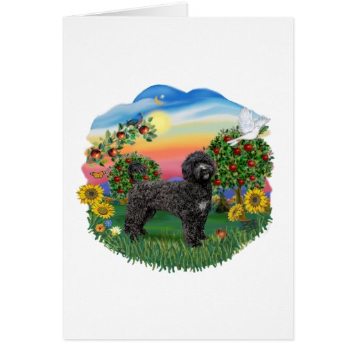 Bright Country - Black Portie 5bw Greeting Cards