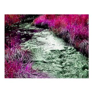bright creek postcard