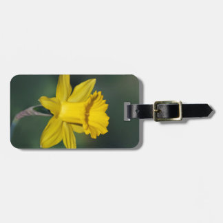 Bright daffodil and its meaning tag for luggage