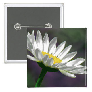 Bright Daisy Flower 2 Inch Square Button