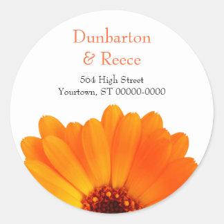 Bright Daisy Stickers
