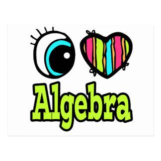 Bright Eye Heart I Love Algebra Postcard