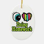 Bright Eye Heart I Love Doing Homework Ornaments