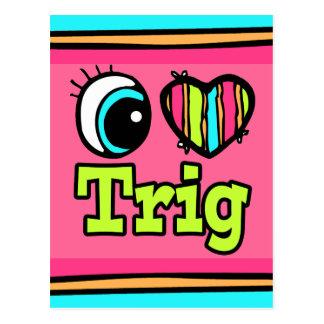 Bright Eye Heart I Love Trig Postcard