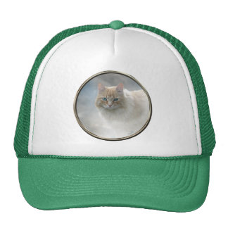 Bright Eyes Cat hat ... White and Green © AH2010