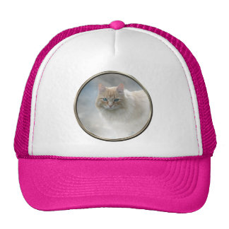 Bright Eyes Cat hat ... White and Hot Pink