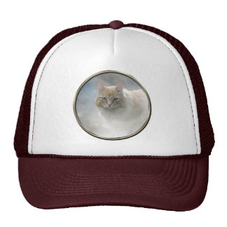 Bright Eyes Cat hat ... White and Maroon